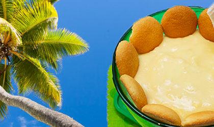 Fresh coconut pudding