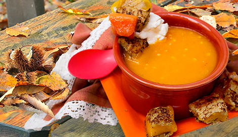 Colors of the season soup with grilled cheese cubes